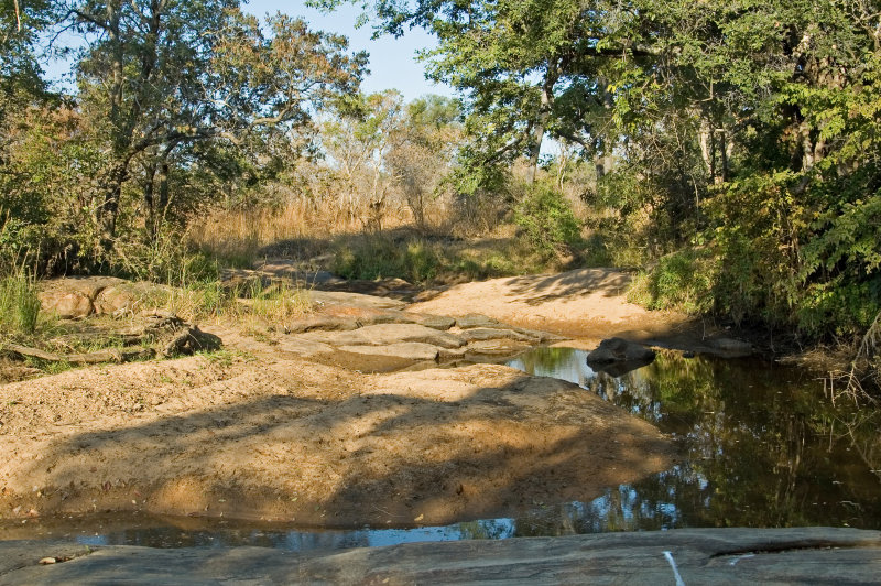 Water Hole Along the River