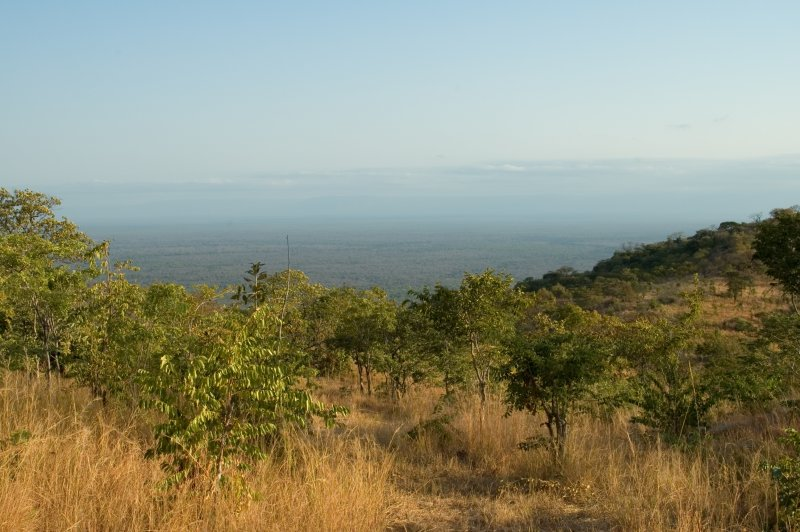 Can You See Zambia?