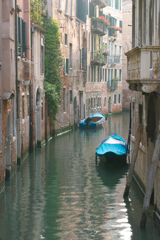 Venice2007SDIM1576.jpg