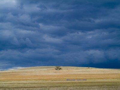 Tamworth storm