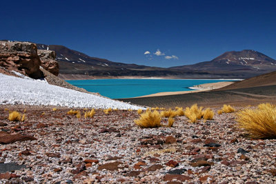 Simply the Best: Highlights of northern Chile and Bolivia
