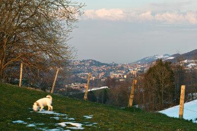 The Gates to St.Gallen