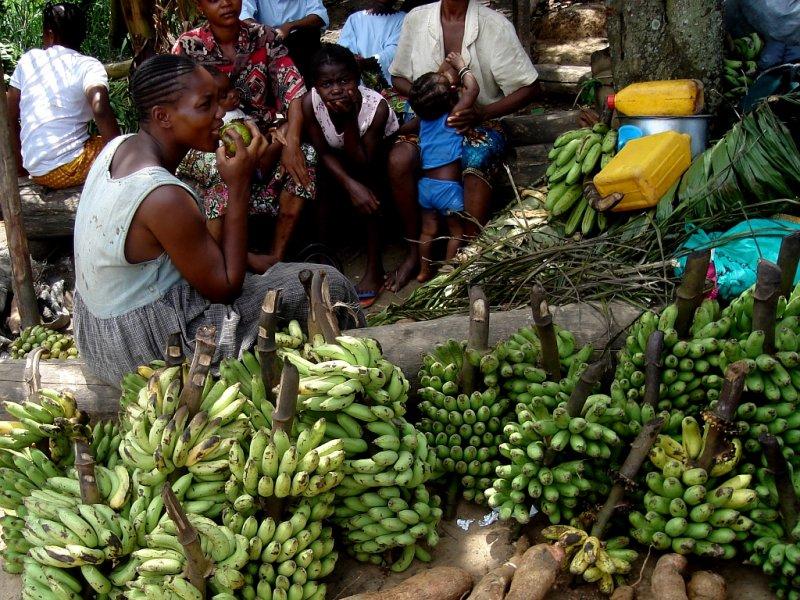 Kisangani Market
