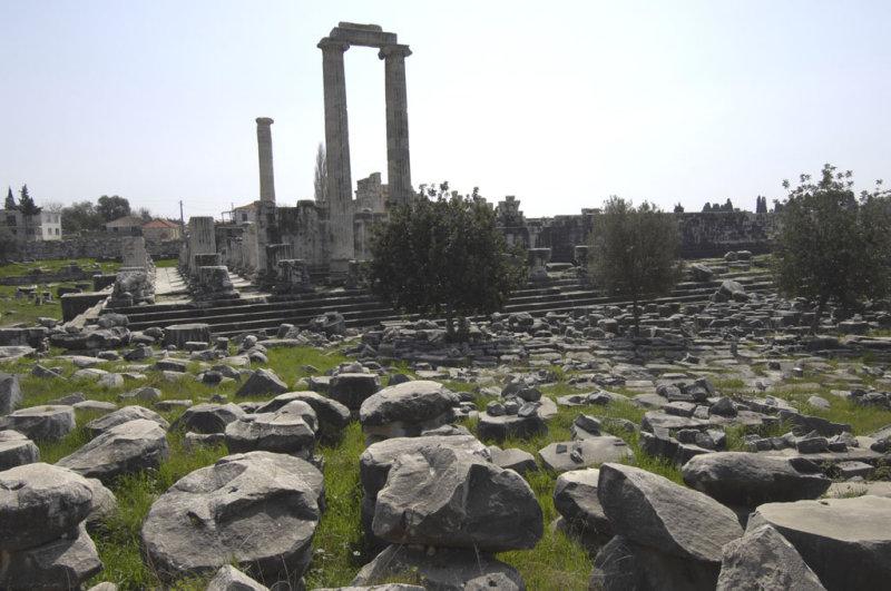 Didyma 2007 4491.jpg