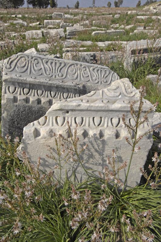 Miletus 2007 4505.jpg