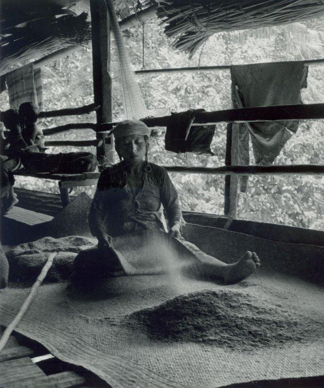 1964 Sarawak - Winnowing rice