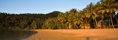 Dunk Island beach and houses pano