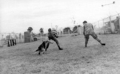 Charlie Berry, Williams & Tarzan-K053 (2)