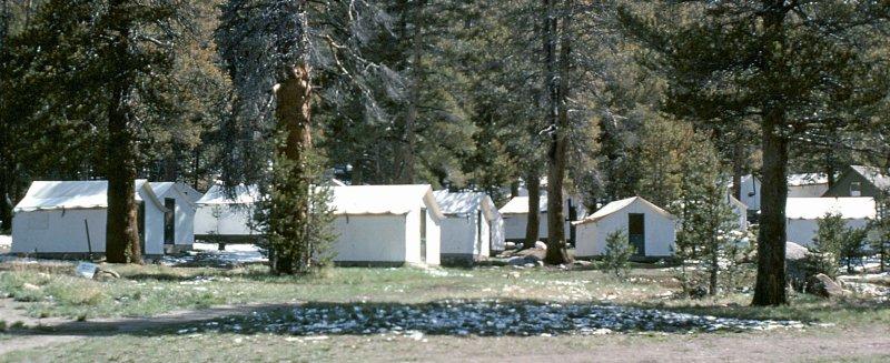 Tuolumne Meadows Near Tioga Pass  (  June 10, 1977)