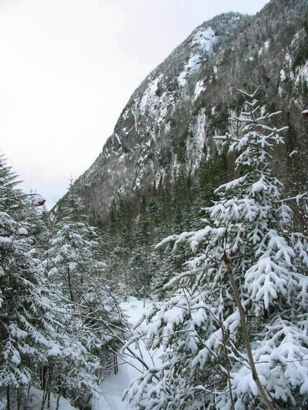 Avalanche Pass trail