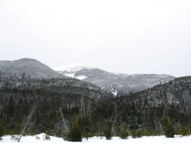 Algonquin above Ranger Station