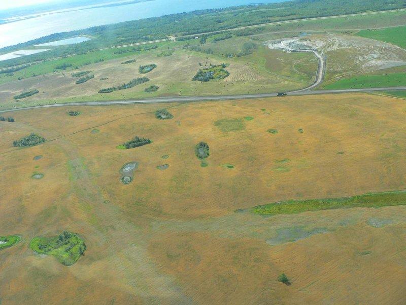 Reclaimed land.jpg