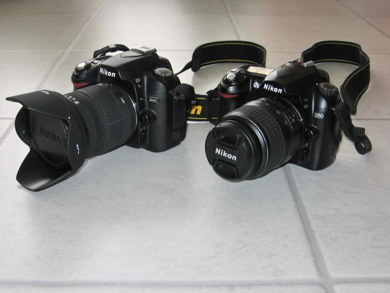 Nikon D80 - Sigma 17-70mm f/2.8-4.5 DC Macro    /\      Nikon D50 -  Nikkor 18-55mm f/3.5-5.6G ED II AF-S DX Zoom