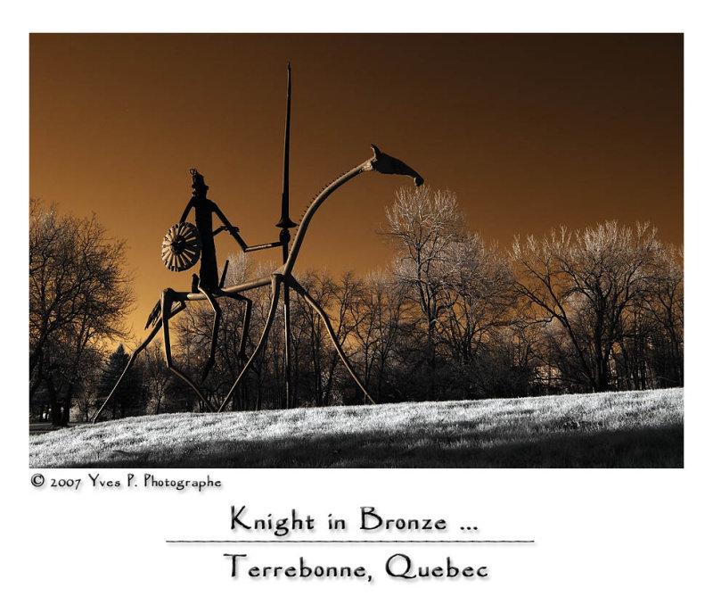 Knight in Bronze ...