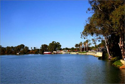 On the river banks of the Murray