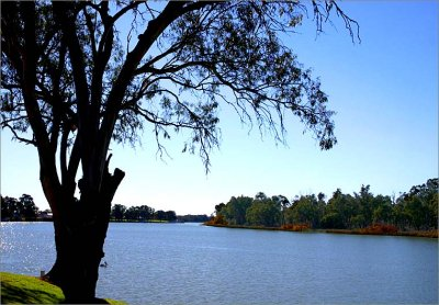 A quiet spot on the Murray River