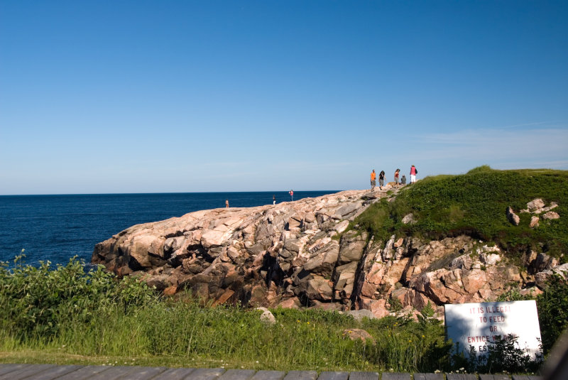 Cabot Trail T Green Cove C a.jpg