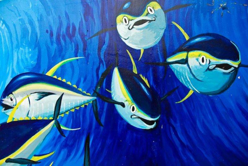 pelagic fishes