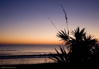 In Silhouette Sunrise II