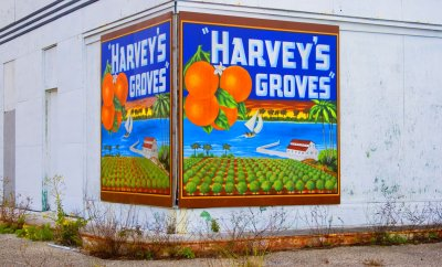 Harvey's Groves