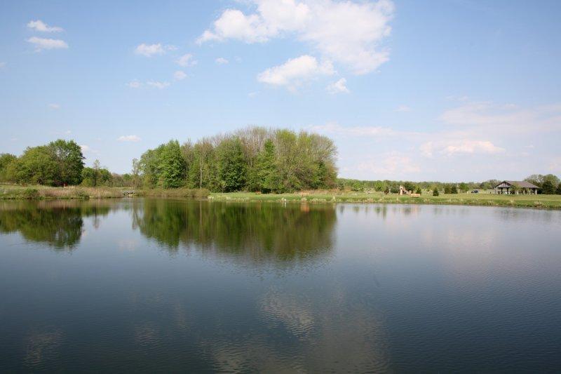 IMAGE: http://www.pbase.com/photosbytom/image/78567498/large.jpg