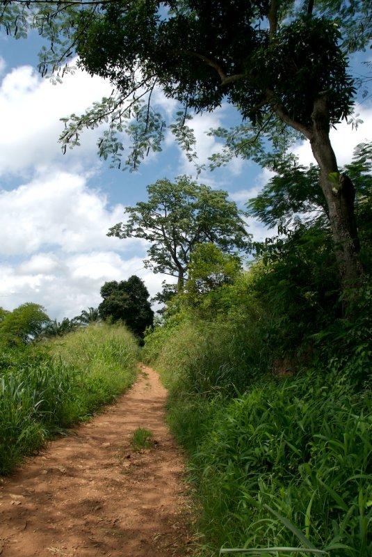 Road Narrows