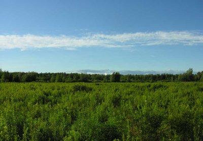 field behind barn