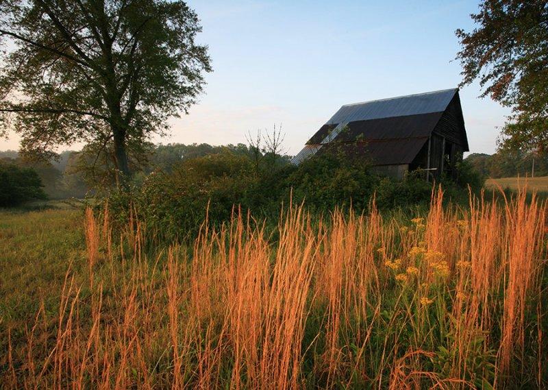 Barn-Yard-6WS.jpg