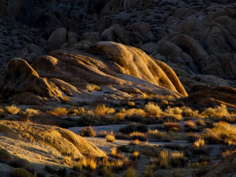 <B>Kissed by Morning Light </B> <BR>Alabama Hills, California  October 2006<FONT SIZE=2></FONT>