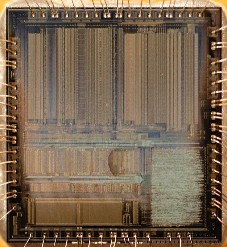 chip35_005.jpg