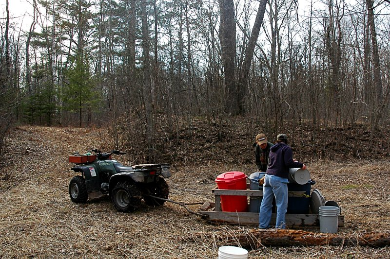 Moving the sap out of the woods