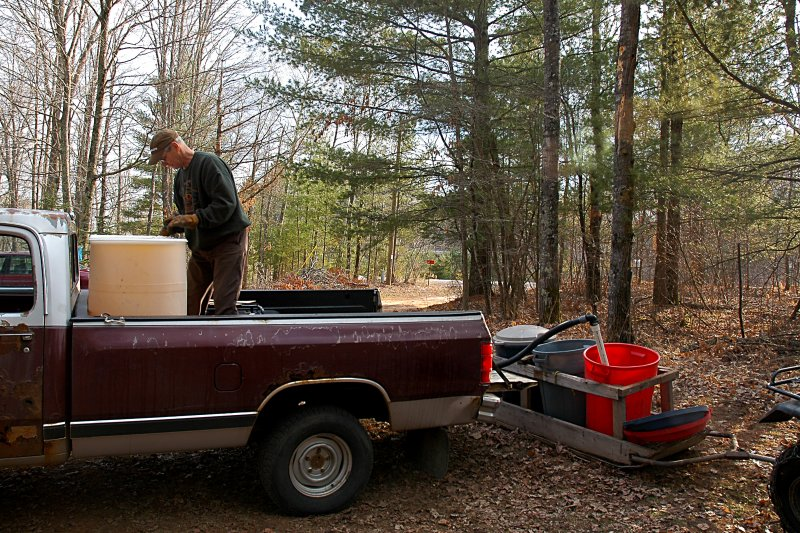 Pumping the sap in a tank for transportation