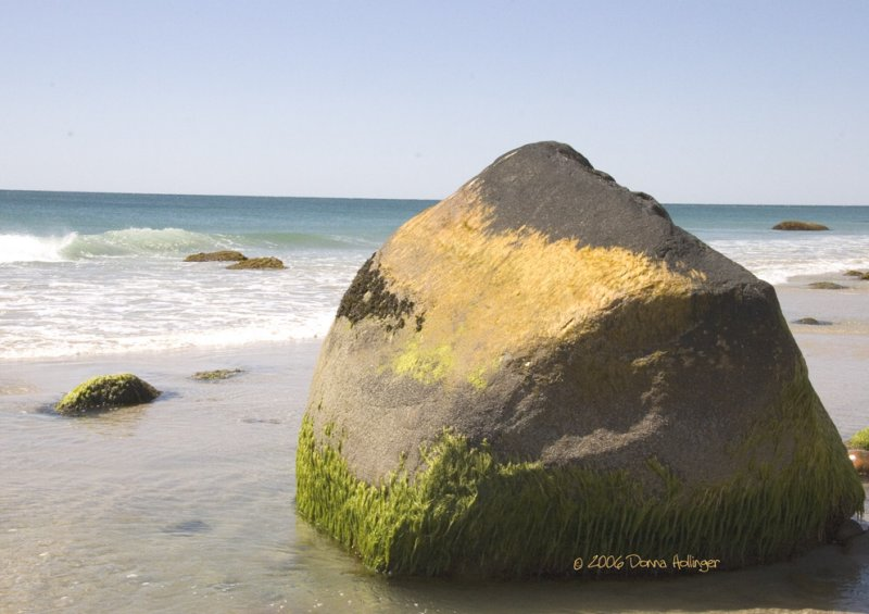 Mossy Rock on Aquinnah