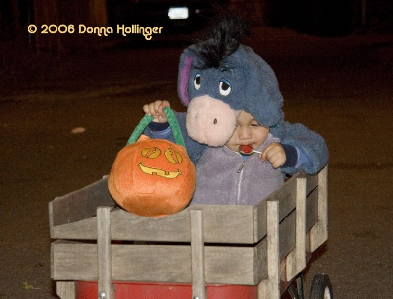 Halloween Wagon Train