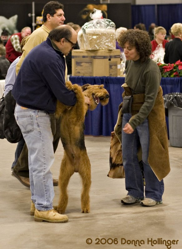 Im an Airedale, so happy to meet you!