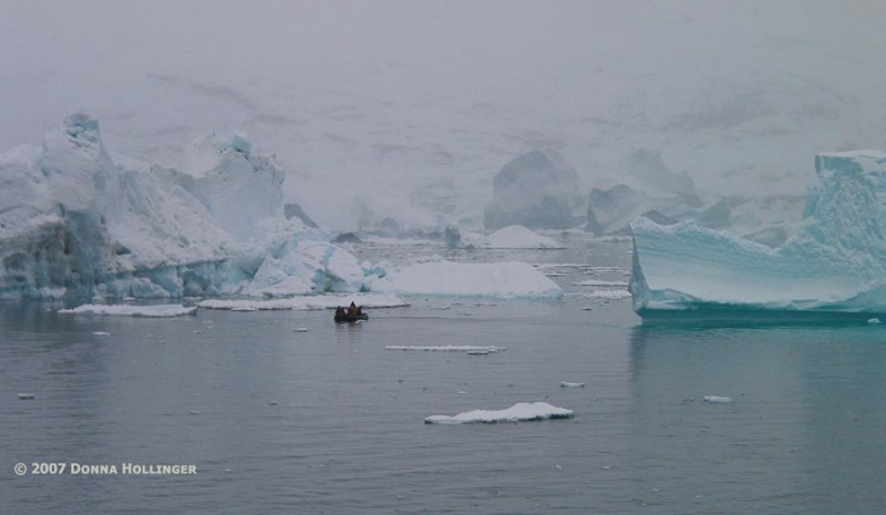 Zodiac investigating iceberg clusters near the shore