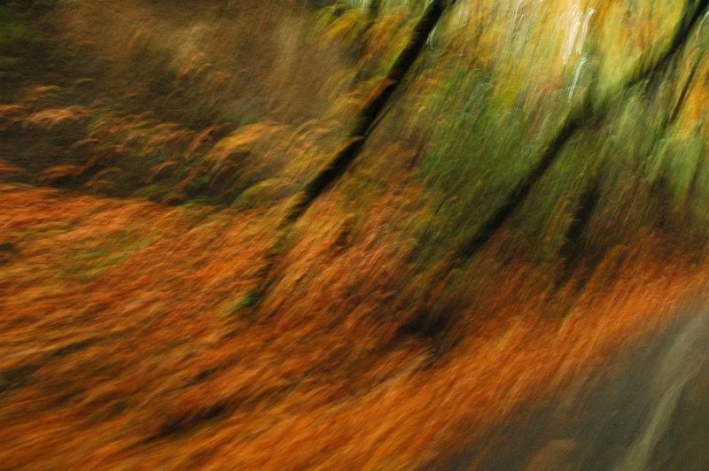 Fall Impressionism
