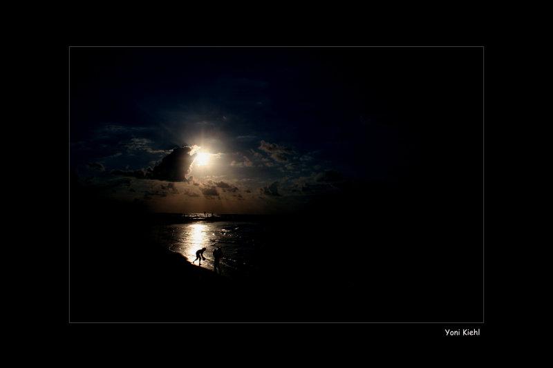 sheraton beach_bl.jpg