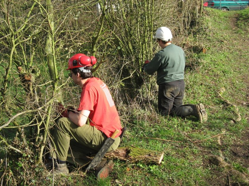 Meanwhile the scrub bashers were removing barbed wire