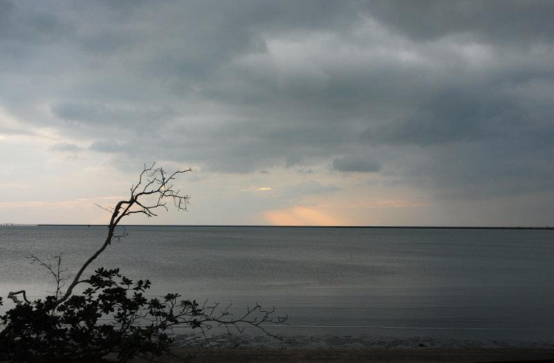 Grey Sky, dark sea and an empty branch