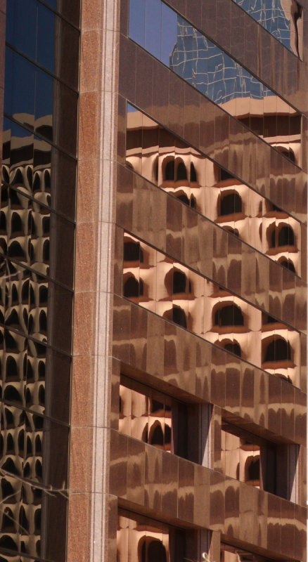 Corporate beehives, Phoenix, Arizona, 2007
