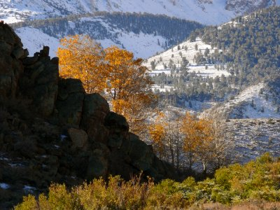 Changing seasons, Buttermilk Hills, California, 2006
