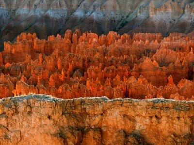 Transition, Bryce Canyon, Utah, 2006