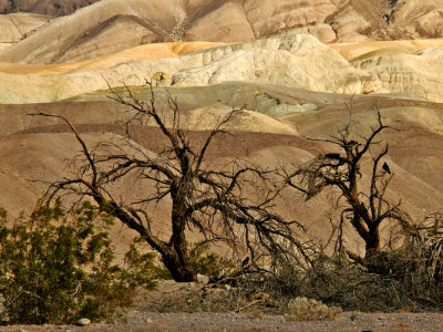 View from Furnace Creek, Death Valley National Park, California, 2007