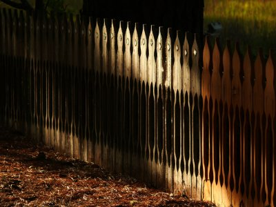 Fence, Tomales Bay, California, 2007