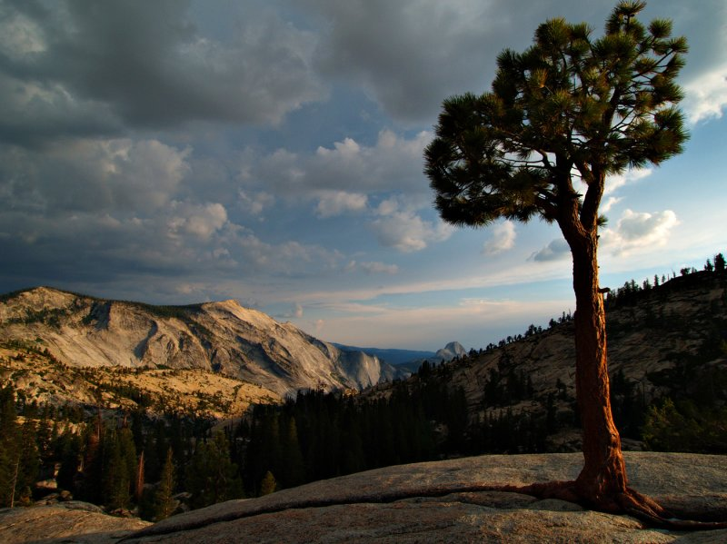 Olmsted point Yosemite, CA