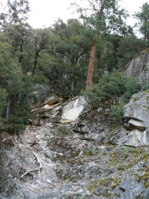 First Rockfall...end of trail?