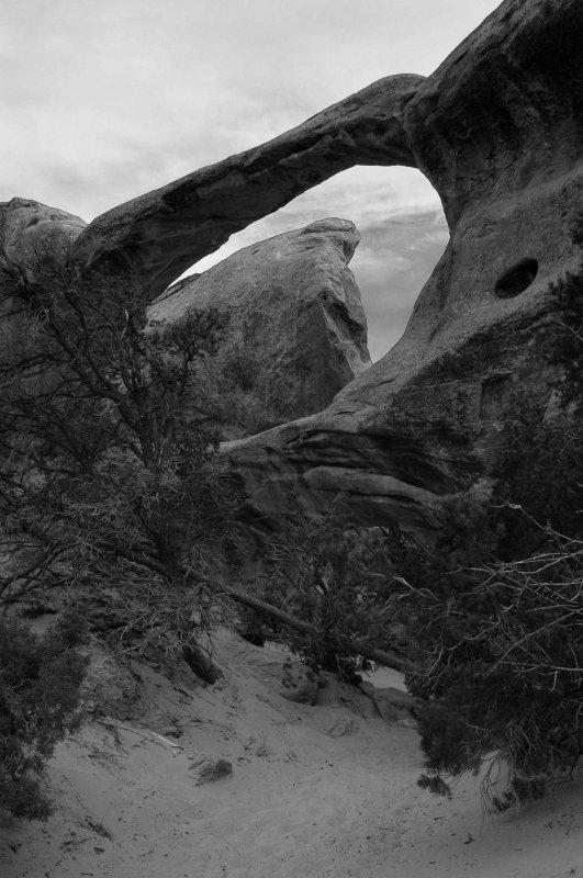 Fin viewed through an arch