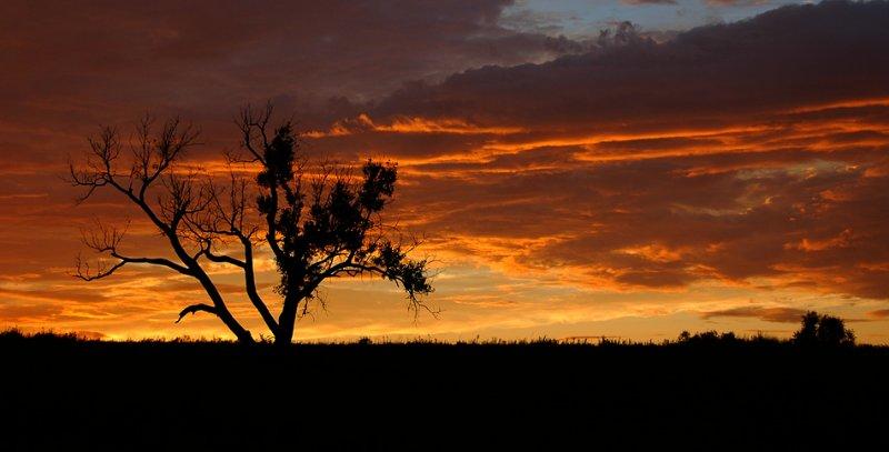 Vivid Sunset at Seat Conservation Area