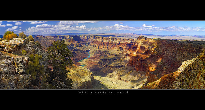 Grand Canyon taken from Moran Point /color, 400Kb/